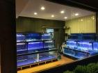全自動海鮮活體展示缸